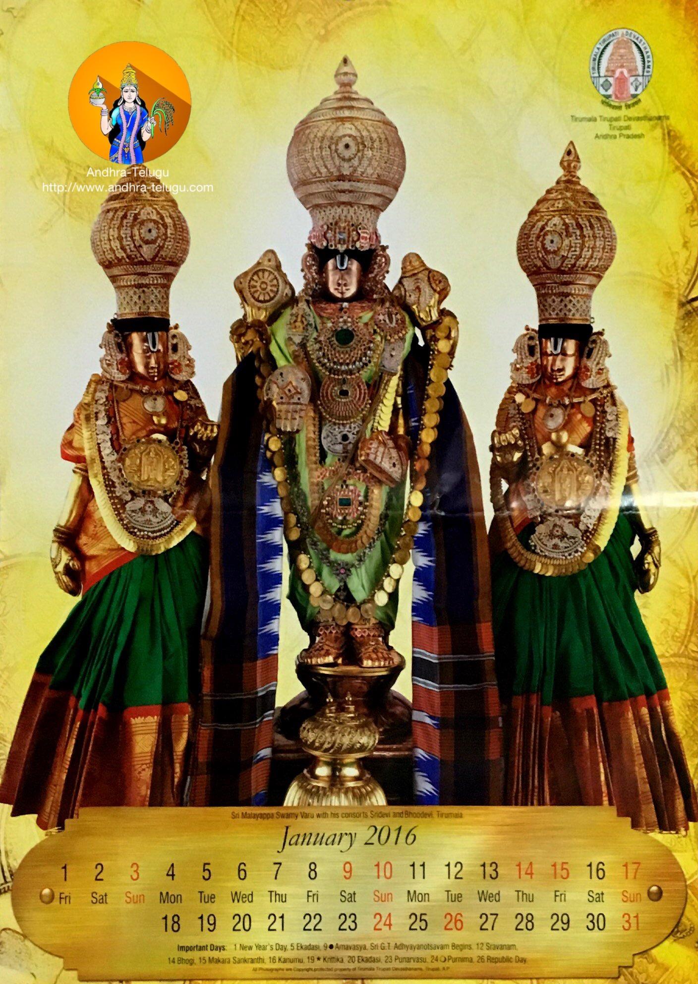 TTD Calendar 2016 | Andhra-Telugu